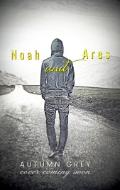 noah and ares temp cover